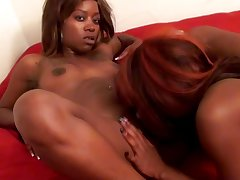 Tasty ebony lesbians rubbing their muffs way down using a gewgaw