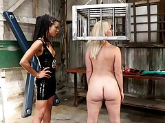 Pornstar Kira Noir rides a large strapon of tow-haired Lisey Sweet